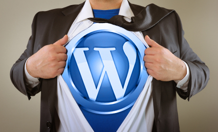 WPTrainMe WordPress Training Empowers Users!