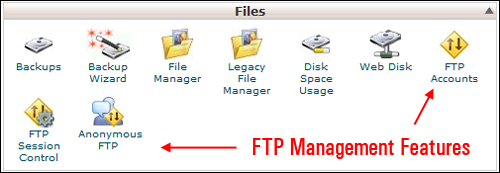 cPanel - FTP Management