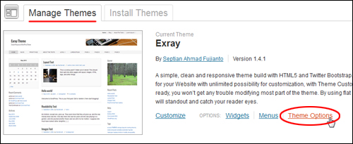 WordPress Theme Management