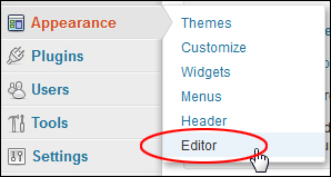 How to edit WP themes