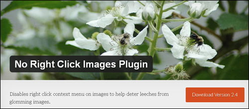 No Right Click Images - WordPress Plugin