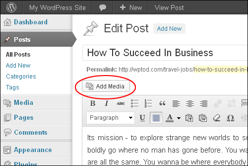 How To Add And Format Images In WordPress Posts And Pages