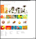 Microsoft Images And Clip Art Library