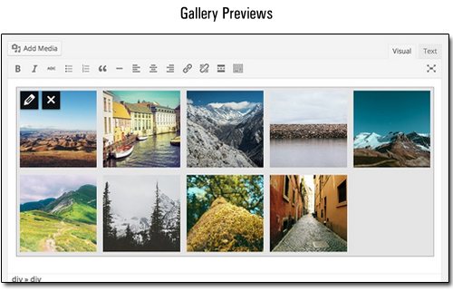 WordPress 3.9 - Gallery Previews